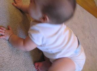 almost ready to start crawling, but then she falls on her stomach and can only scoot...
