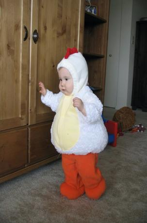 Audrey in her chicken suit.  She sure is a cutie.