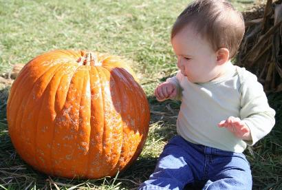 This pumpkin looked a little leprous, and Audrey was afraid to touch it!