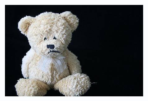 I used Audrey's Trevor bear to take some test shots.  He looks so sad in this picture.